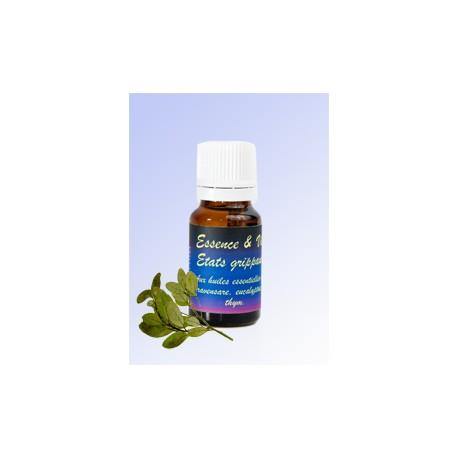 Essence & Vie - Etats grippaux